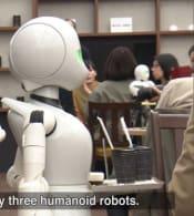 robotos.jpg