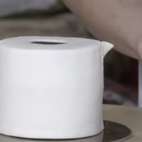 toilet paper roll cake