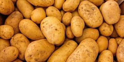 potatoes 411975 640 1
