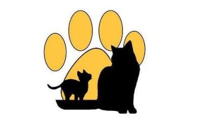 just cats logo