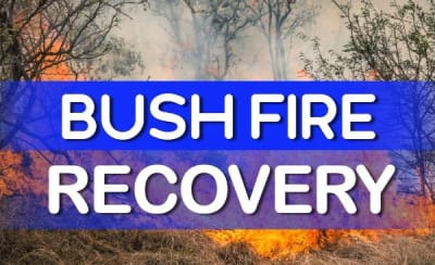 FB_Bush-Fire-Recovery_1.jpg