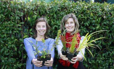 Narooma plant swap (1).jpg