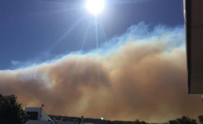 Wadbilliga fire (1).jpg