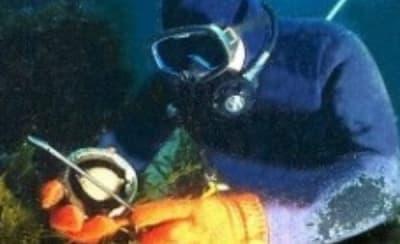 abalone-diver 222 (1).jpg