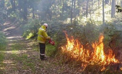 hazard-reduction-fire-03.jpg