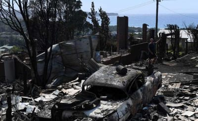how-to-donate-to-the-tathra-bushfire-victims-2.jpg