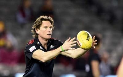 Sheedy backs Hird for coaching return