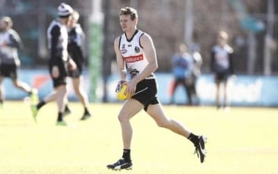 Surgery for Pies forward