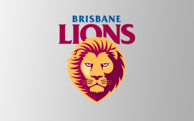 Lions overcome plucky Roos