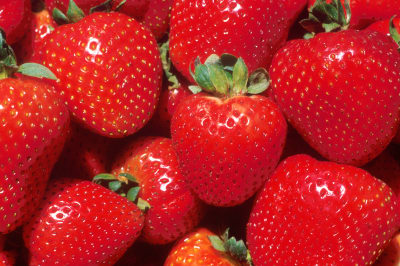 Image result for strawberry