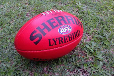 Sherrin Lyrebird Full Size ball, taken 2014