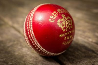 Cricket Ball (27343391052)