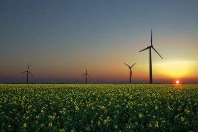 Renewable_energy_generic.jpg