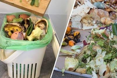 compost 2
