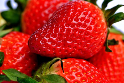 strawberry-2290969_960_720.jpg