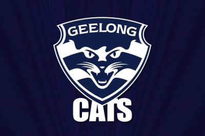 Cats overcome dogged Suns