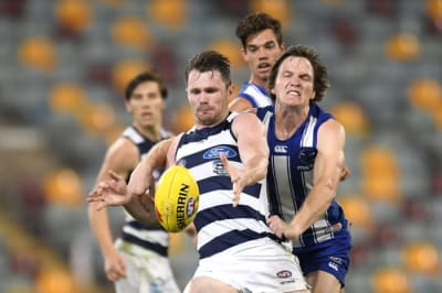 Cat named All-Australian captain