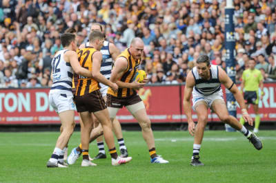 Roughy to return