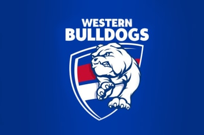 Bulldogs hold off brave Blues