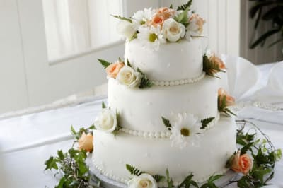 beautiful blooming bridal 1702373
