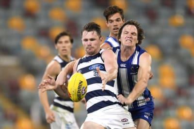 Cat named All-Australian captain