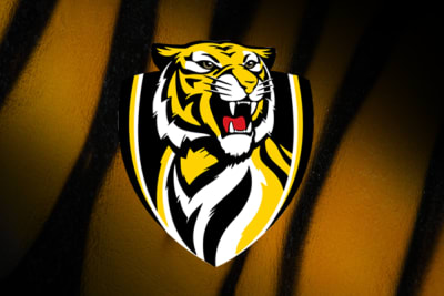 AFL Round 23 – Richmond vs. Brisbane Lions