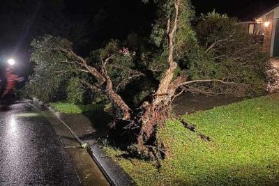 Sunshine_Coast_storm_damage_QFES_20210513001541769955-minihighres.jpg