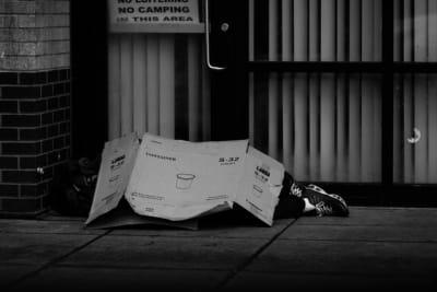 Homeless Cardboard