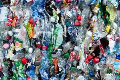 plastic-bottles-115071_640_mc.jpg