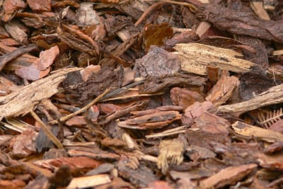 bark mulch 958416 1280