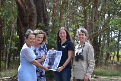 Greening Australia Glossy Black Cockatoo