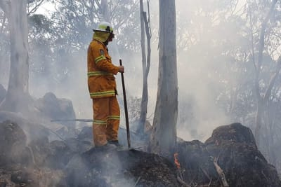 green wattle creek fire now contained