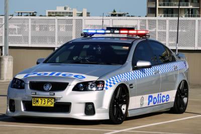 police car 4