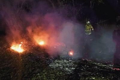 shoalhaven-heads-tree-fire.jpg