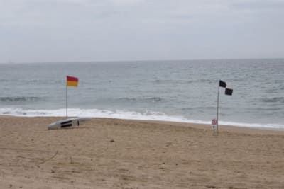 victorias-grief-marked-at-shoalhaven-beaches.jpg
