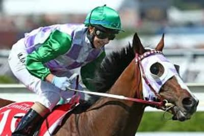 Michelle Payne Prince of penzance Melbourne Cup 2015