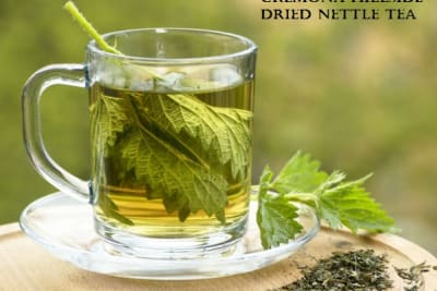 Nettle tea in glass. Fresh and dry nettle.