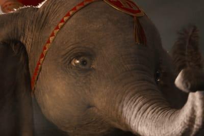 Dumbo18