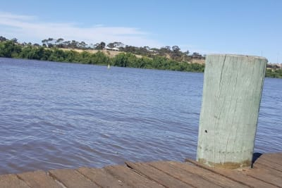 Murray River 1 (Claire).jpg