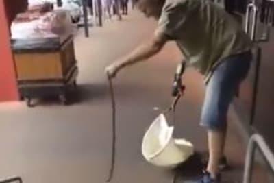 Snake catch Woolies.JPG