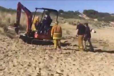 HorseshoeBay hole collapse.JPG