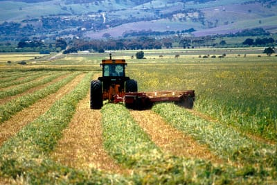 640px CSIRO ScienceImage 4569 Cutting hay at Aldinga south of Adelaide in South Australia 1992