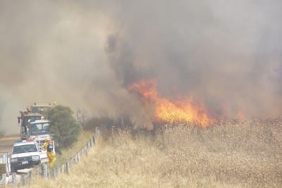 Grass fire at Willunga
