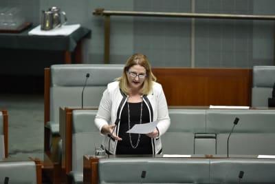 Rebekha Sharkie in Parliament supplied