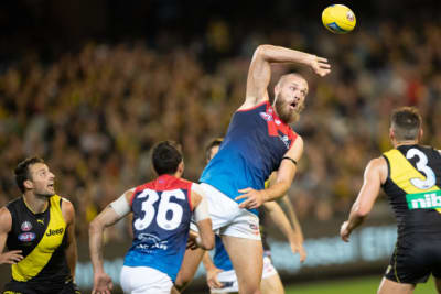 Gawn to lead Dees