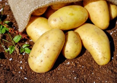 potatoes 1585075 640