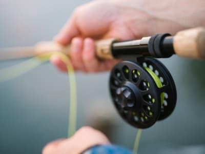 fly fishing 1149502 960 720