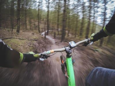 mountain biking 1210066 960 720
