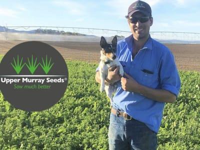 upper murray seeds agfest blogimage