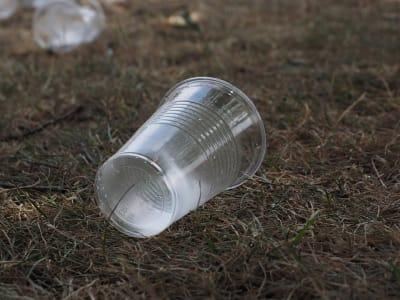 beverage-cups-2147903_960_720 (1).jpg